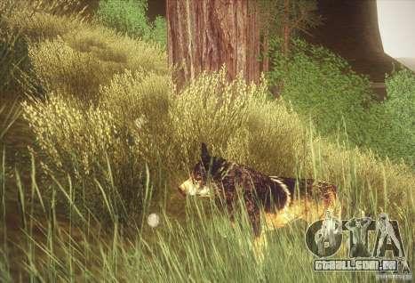 Hunting Mod para GTA San Andreas segunda tela
