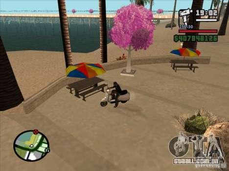 Pequenas curiosidades para GTA San Andreas segunda tela