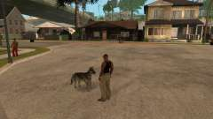 Cachorro no GTA San Andreas