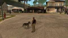 Cachorro no GTA San Andreas