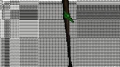 Bits com uma faixa verde