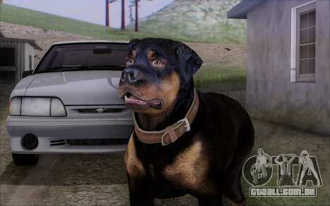 Rottweiler from GTA 5 para GTA San Andreas
